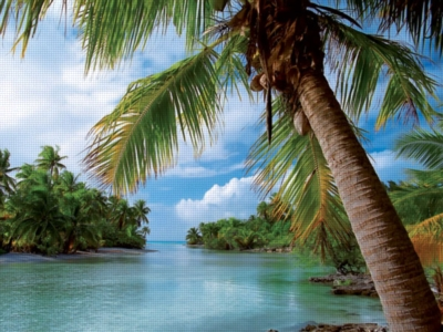 Caribbean Paradise - 500pc Jigsaw Puzzle by Ravensburger