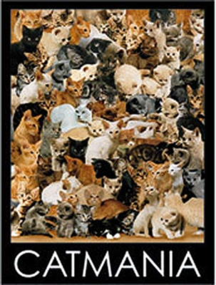 Cat Mania - 1000pc Jigsaw Puzzle by Ravensburger