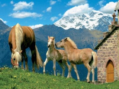 Horse - 1500pc Jigsaw Puzzle by Ravensburger