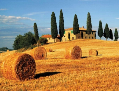 Tuscan Landscape - 2000pc Jigsaw Puzzle by Ravensburger
