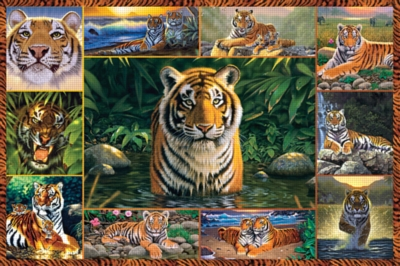 Tiger - 5000pc Jigsaw Puzzle by Ravensburger