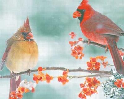 Cardinal Couple - 1000pc Jigsaw Puzzle by Springbok