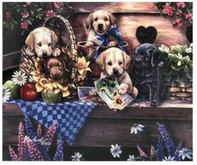 Rascals In The Garden - 550pc Jigsaw Puzzle by Serendipity