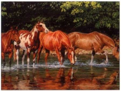 Reflections - 1000pc Jigsaw Puzzle by Serendipity