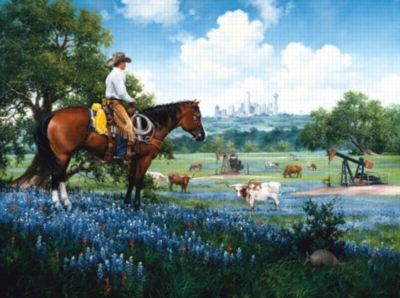 The Texans - 1000pc Jigsaw Puzzle by Sunsout