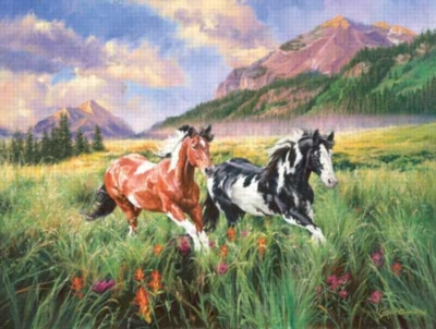 Mountain Stroll - 500pc Jigsaw Puzzle by Sunsout