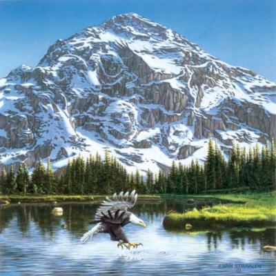 Purple Mountain Majesty - 500pc Sunsout Jigsaw Puzzle