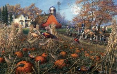 Pheasant Pumpkin Patch - 1000pc Jigsaw Puzzle by Sunsout