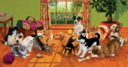 Jigsaw Puzzles - Tug of War