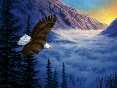 Soaring High - 500pc Jigsaw Puzzle by Sunsout