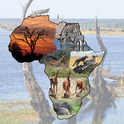 African Wildlife - 500pc Jigsaw Puzzle by Sunsout