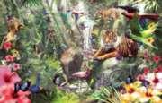 Jigsaw Puzzles - Asian Rainforest
