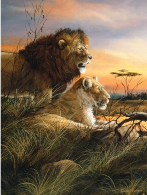 Jigsaw Puzzles - Lions At The Watering Hole