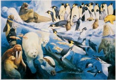 Polar Regions - 2000pc Jigsaw Puzzle by Sunsout