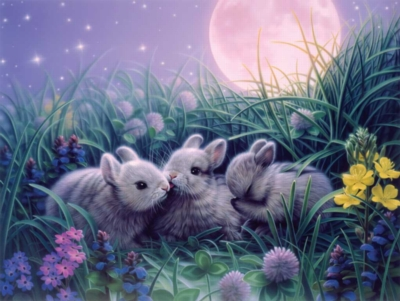 Jigsaw Puzzles for Kids - Moon Babies
