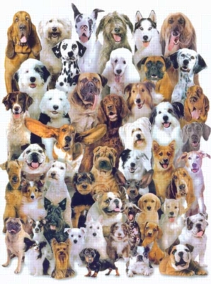 Canine Convention - 1000pc TDC Jigsaw Puzzle and Roll-up