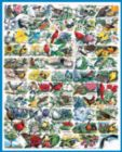 State Birds & Flowers - 1000pc Jigsaw Puzzle By White Mountain