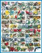 Jigsaw Puzzles - State Birds & Flowers
