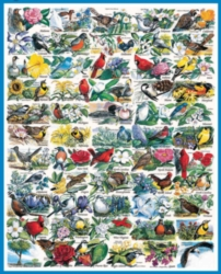 Jigsaw Puzzles - State Birds & Flowers