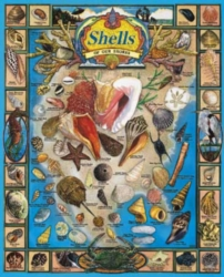 Jigsaw Puzzles - Shells of our Shores