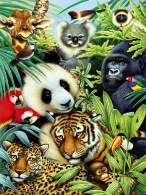 Animal Magic - 550pc Jigsaw Puzzle by White Mountain