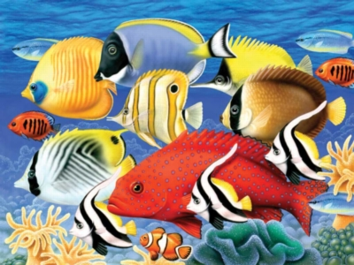 Coral Fish - 550pc Jigsaw Puzzle by White Mountain