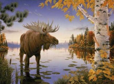 Jigsaw Puzzles - Majestic Moose