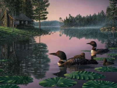 Northern Tranquility - 550pc Jigsaw Puzzle by White Mountain