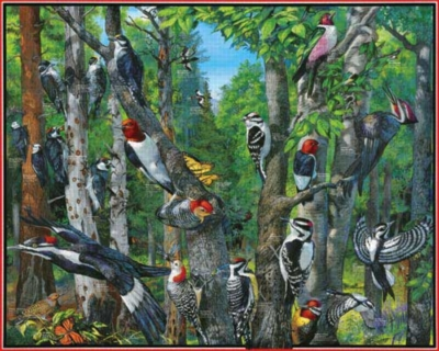Woodpeckers - 1000pc Jigsaw Puzzle by White Mountain