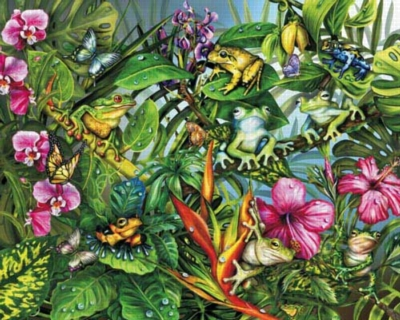 Frogs Gone Wild - 1000pc Jigsaw Puzzle by White Mountain
