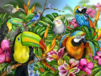 Birds of a Feather - 300pc Large Format Jigsaw Puzzle by White Mountain