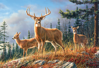 Hautman Brothers: Autumn Whitetails - 2000pc Jigsaw Puzzle by Buffalo Games