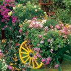 Blooming Cart - 500pc Jigsaw Puzzle by Springbok
