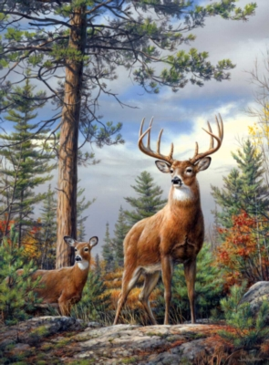 Jigsaw Puzzles - Hautman Brothers: Standing Proud