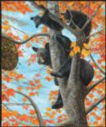 Up a Tree - 550pc Jigsaw Puzzle By Sunsout
