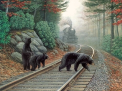 Jigsaw Puzzles - Bear Tracks