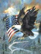 Jigsaw Puzzles - American Eagle