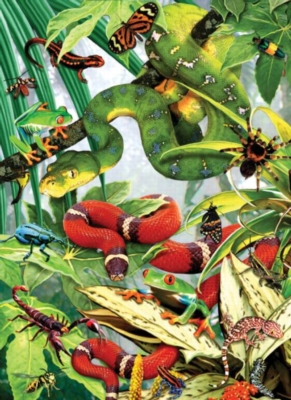 Creepy Crawlies - 500pc Large Format Jigsaw Puzzle by Sunsout