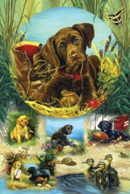 Jigsaw Puzzles - Pond Puppies