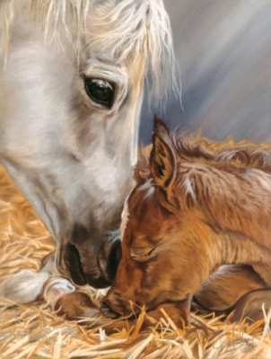 Nature's Gift - 1000pc Jigsaw Horse Puzzle By Sunsout