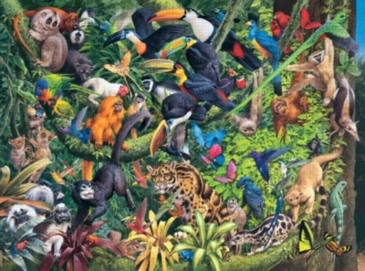 Tropical Forest - 1000pc Jigsaw Puzzle By Sunsout