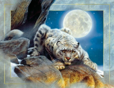 Edge of Night - 1000+pc Large Format Jigsaw Puzzle by Sunsout
