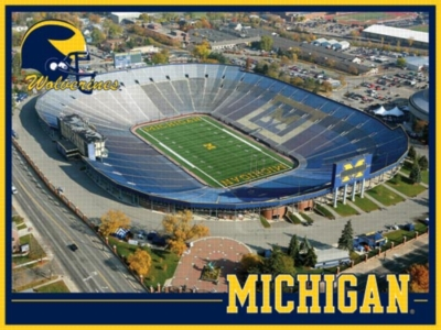 University of Michigan: The Big House - 550pc Jigsaw Puzzle by White Mountain