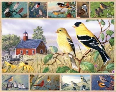 Jigsaw Puzzles - Songbirds