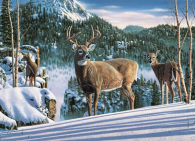 Wildlife Masters: Morning View - 1000pc Jigsaw Puzzle by Masterpieces