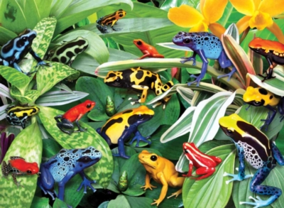 Ravensburger Jigsaw Puzzles - Friendly Frogs