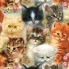 A Pile of Kittens - 1000pc Jigsaw Puzzle By Sunsout