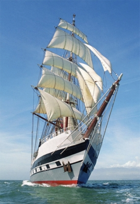 Sailing Ship - 1000pc Jigsaw Puzzle by Castorland