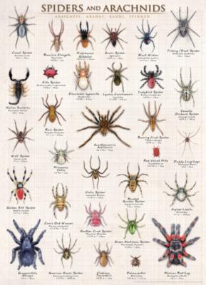 Eurographics Jigsaw Puzzles - Spiders & Arachnids
