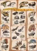 Dinosaur Skulls - 1000pc Jigsaw Puzzle by Eurographics